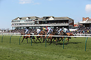 The horses start The Seko Logistics Scotland Novices Handicap Hurdle Race over 3m (£16,800) before the packed grandstands  during the Scottish Grand National, Ladies day at Ayr Racecourse, Ayr, Scotland on 12 April 2019.