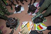 Bushmeat inspection<br /> Yengo Eco Guard control point<br /> Odzala - Kokoua National Park<br /> Republic of Congo (Congo - Brazzaville)<br /> AFRICA