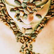 Diego Badaro, la civilisation du cacao