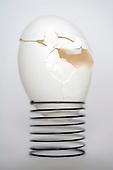 still life - egg