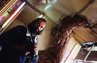 Self-Portrait, Kash in Kabul 23 July 2005.