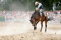 Rodeo - Bronc Riding : La monte du cheval sauvage