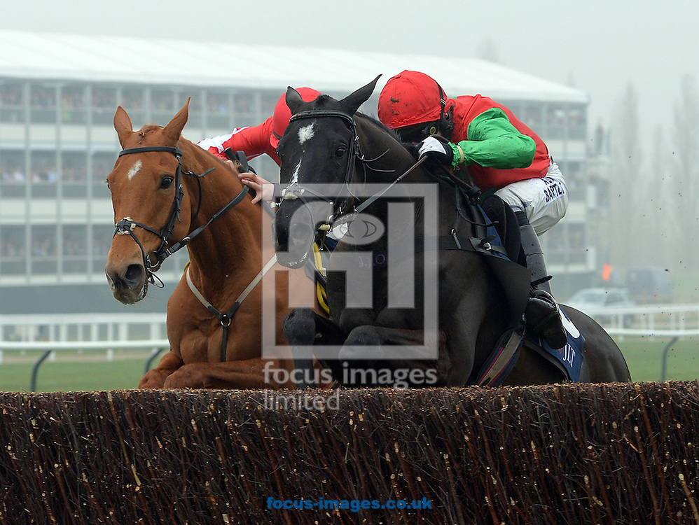 A preview of this weekend's favourites in UK Racing.<br /> Picture by Martin Lynch/Focus Images Ltd 07501333150<br /> 09/12/2016<br /> <br /> Original caption:<br /> Right is TAQUIN DU SEUIL with A P McCoy 1st from left DOUBLE ROSS in Novice Chase  on World Hurdle Day at Cheltenham 13-3-13.
