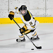 AIC Hockey vs Army 2