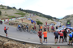 Esteban Chaves (COL) Mitchelton-Scott, Nairo Quintana (COL) Movistar, Rafal Majka (POL) Bora-Hansgrohe and Sepp Kuss (USA) Jumbo-Visma on the final Cat 1 climb up to Observatorio Astrofisico de Javalambre during Stage 5 of La Vuelta 2019 running 170.7km from L'Eliana to Observatorio Astrofisico de Javalambre, Spain. 28th August 2019.<br /> Picture: Ann Clarke | Cyclefile<br /> <br /> All photos usage must carry mandatory copyright credit (© Cyclefile | Ann Clarke)