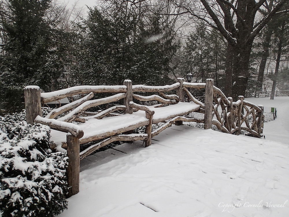 Rusitc bench in Shakespeare Garden in Central Park during a snow storm; New York City.