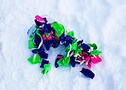 A pile of booties lays in the snow before Rob Cooke puts them on his team ahead of a training run.