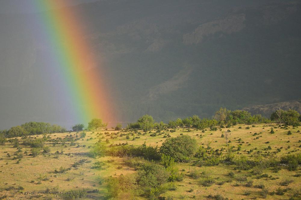 Rainbow on a grazed landscape, grazed by Fallow deer, Dama dama, Studen Kladenets reserve, Eastern Rhodope mountains, Bulgaria