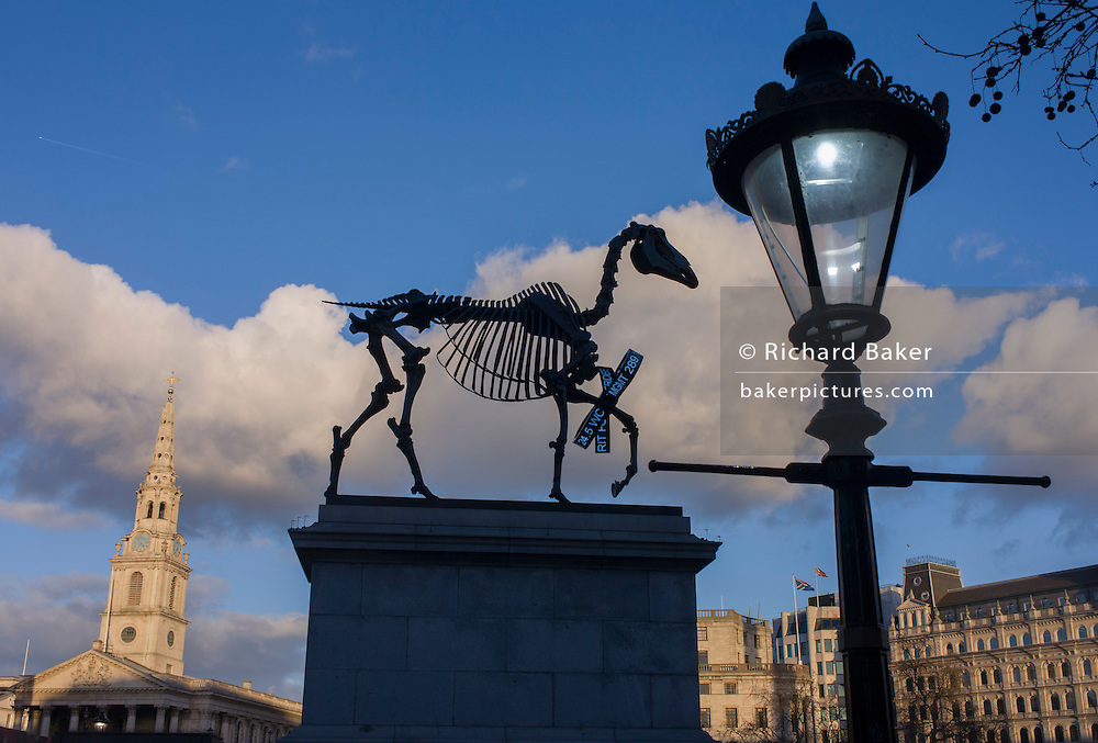 The sculpture known as Gift Horse, by German artist Hans Haacke, in London's Trafalgar Square on the public space called the Fourth Plinth. London mayor Boris Johnson financed the 10th artwork to appear here. The skeletal, riderless horse (derived from The Anatomy of a Horse - George Stubbs, 1766) with a London Stock Exchange tickertape is a comment on power, money and history.