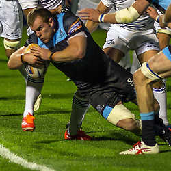 Glasgow Warriors v Leinster | Rabo Direct Pro 12 | 20 September 2013
