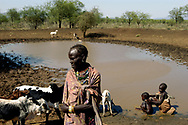 Toposa pastoralists gather with their livestock at a watering hole in Eastern Equatoria province. Drought is severely effecting the region, making water resources scarce and putting pressure on traditional hersdsmen who depend on water and pasture lands for their survival. <br /> Longanyat, South Sudan. 26/09/2009.