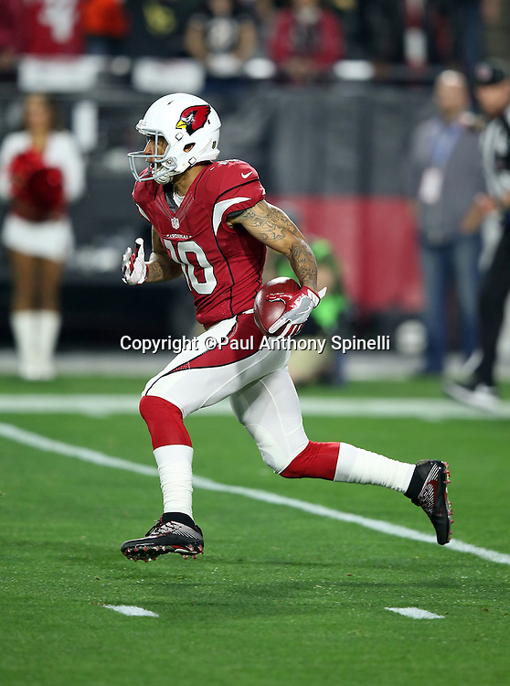 Arizona Cardinals wide receiver Brittan Golden (10) returns a kick during the NFL NFC Divisional round playoff football game against the Green Bay Packers on Saturday, Jan. 16, 2016 in Glendale, Ariz. The Cardinals won the game in overtime 26-20. (©Paul Anthony Spinelli)