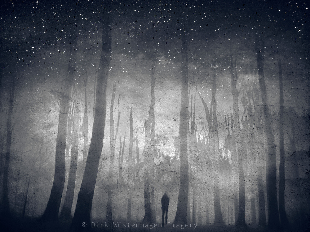 Composite picture with a starry sky a a person walking into a destroyed forest
