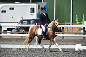46 - 17th Jun - Dressage
