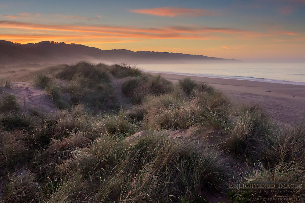 Morning light at Limantour Beach, Point Reyes National Seashore, Marin County, California