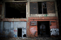 The long since abandoned Ford Packard Plant.