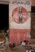 A cock struts under the detail of an old Coca-Cola mural on a wall at the weekly market at Qurna, a village on the West Bank of Luxor, Nile Valley, Egypt.