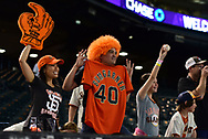 PHOENIX, AZ - APRIL 06:  San Francisco Giants fans stand above the visitors dugout prior ot the MLB game between the San Francisco Giants and Arizona Diamondbacks at Chase Field on April 6, 2017 in Phoenix, Arizona.  (Photo by Jennifer Stewart/Getty Images)