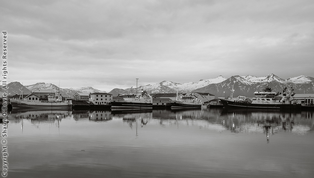 Fishing boats at Hofn, Iceland