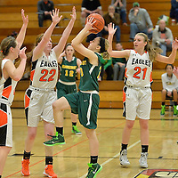 12.13.2014 Amherst at North Olmsted Girls Varsity Basketball