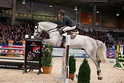 Vorsselmans Annelies, (NED), Emir R<br /> Springen Klasse Z-ZZ<br /> KWPN Hengstenkeuring - 's Hertogenbosch 2016<br /> © Hippo Foto - Dirk Caremans<br /> 04/02/16