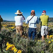 Searching for wildlife in Grand Teton National Park on a Teton Science Schools wildlife tour.(Greg Peck, Matthew Bart, Sean Baker, Maura Bushior, Katie-Cloe Stock, Tracy Logan)