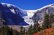 The Dome Glacier from Wilcox Ridge, Columbia Icefields area, Jasper National Park, Alberta, Canada.
