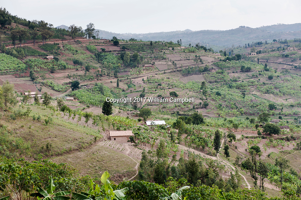 KAYUMBU RWANDA-OCT 11:  Rural Rwandan countryside. Rwanda is the most densely populated country in Africa. There are an estimated 352 people per square kilometer.  35 percent of the population engage in subsistence agriculture and live under the poverty line.  But with a growth rate of 6-8 percent  since 2003 the poverty rate is declining. (Photo by William Campbell-Corbis via Getty Images)