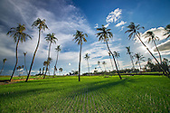 Vietnam Images-landscape-island phong cảnh việt nam hoàng thế nhiệm