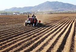 April 27, 2018 - Huludao, China - Peasant farmers are busy with peanut sowing in Huludao, China's Liaoning Province. (Credit Image: © SIPA Asia via ZUMA Wire)