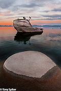 """Bonsai Rock Sunrise 4"" - A winter sunrise over Lake Tahoe at Bonsai Rock"