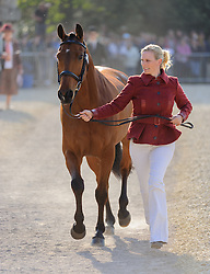 Zara Phillips and her horse High Kingdom pass the first veterinary inspection at the start of Badminton Horse Trials during the trot up at the 2013 Mitsubishi Motors Badminton Horse Trials, Thursday 02  May  2013.  Badminton, Gloucs, UK. Photo by: Nico Morgan / i-Images
