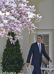 U.S. President Barack Obama walks to deliver a speech on the 2014 budget plan in the Rose Garden of the White House in Washington D.C., capital of the United States, April 10, 2013. U.S. President Barack Obama on Wednesday unveiled his budget plan, proposing 3.78 trillion dollars in spending for the 2014 fiscal year and 1.8 trillion deficit reduction over the next decade, April 10, 2013. Photo by Imago / i-Images...UK ONLY.