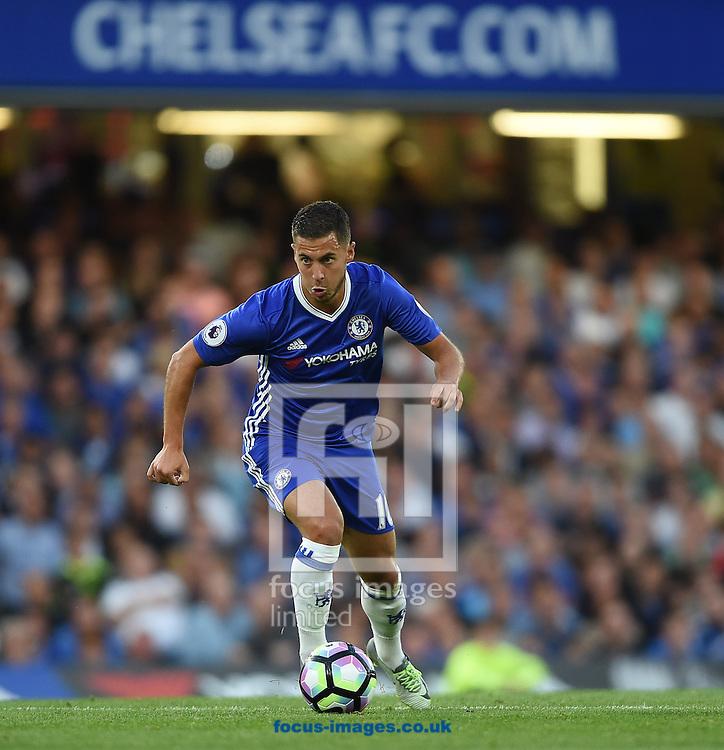 Chelsea's Eden Hazard during the Premier League match at Stamford Bridge, London<br /> Picture by Daniel Hambury/Focus Images Ltd +44 7813 022858<br /> 15/08/2016