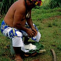 French Polynesia, Tahiti, Taha'a. Tahitian islander demonstrates opening a coconut.