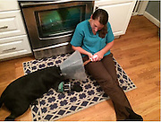 """Angell Doctors """"Grow"""" Bone for Dog with Crippling Leg Condition<br /> <br /> BOSTON, Oct. 8, 2014 – <br /> <br /> A friendly disposition and a cute, crooked front paw immediately drew Jessica Cantone and her fiancé Nick to the weeks-old black lab puppy they named """"Lucy"""" and brought home—along with her lookalike sister—earlier this year.  Little did they know that Lucy's outward-facing paw was actually a deformity that would affect her quality of life for months to come, and require surgery at the MSPCA's Angell Animal Medical Center to correct.<br />  <br /> Painful puppy play <br /> Lucy and her sister, named """"Lola,"""" immediately settled into their new owners' Boston-area home.  The dogs' early days were marked by constant play and walks around the neighborhood.  Soon after, though, Jessica noticed a change.  """"At first it was subtle—Lucy would stop playing and sit down even as Lola continued to encourage her on.  Shortly thereafter she began to limp immediately after playing.""""<br />  <br /> Jessica brought Lucy to her local veterinarian who examined the dog's right front paw and reassured Jessica that, despite the deformity, Lucy would be able to compensate as she got older.  The limping got worse, however, and Lucy was referred to Angell. <br />  <br /> Lucy's trip to Angell <br /> Determined to help Lucy overcome her physical limitations, Jessica brought her to see Drs. Sue Casale and Daniel Frem of Angell's renowned surgery service.  """"Lucy had a right radius (ulna) angular limb deformity—which means the bones of her legs were misshapen—causing her paw to turn out and, as a result, compromising the leg's ability to bear weight,"""" said Dr. Casale.  Moreover, the affected leg was nearly one inch shorter than her other front leg.  """"This is what was causing her so much pain.""""<br />  <br /> Drs. Casale and Frem employed a novel procedure called a corrective osteotomy in which Lucy's lower leg bone was cut and re-aligned using a device called a """"circular external fixator"""