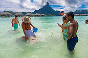 Sting Ray, InterContinental Bora Bora Resort Thalasso Spa, Bora Bora, French Polynesia