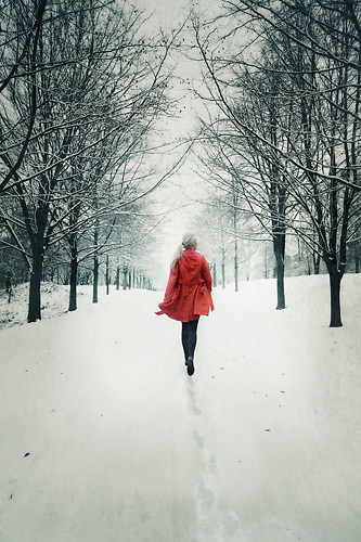 walking in the snow - photo #38