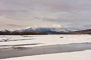 Winter descends on  the Chilkat Bald Eagle Preserve in Southeast Alaska. Afternoon.