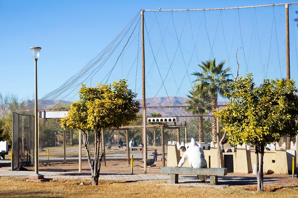 Errachidia park, Southern Morocco, 2017-12-23.