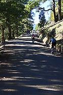 Biking Patagonia, Lanin National Park, Argentina