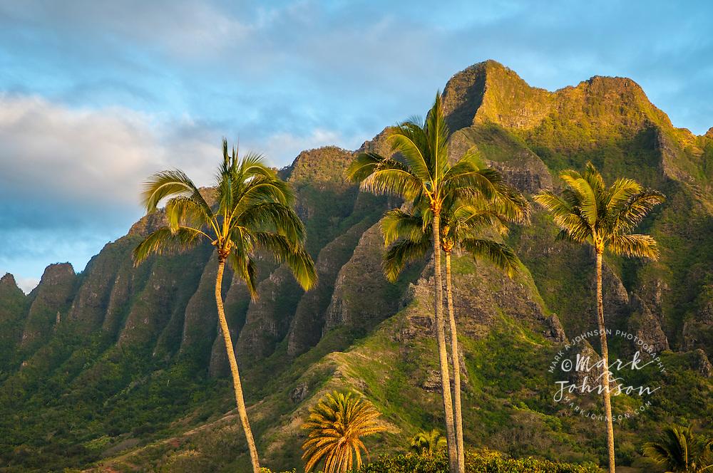 The spectacular ridges of Mo'o Kapu O Haloa, Kualoa, Oahu, Hawaii