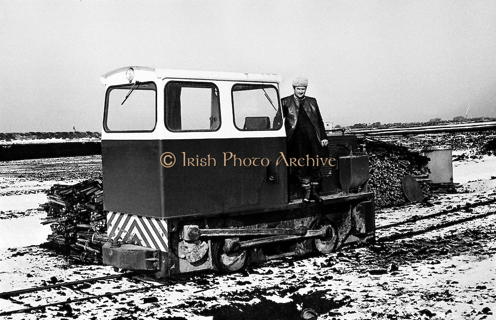 A snowy scene from the Bord na Mona works at Littleton, Co Tipperary.<br />