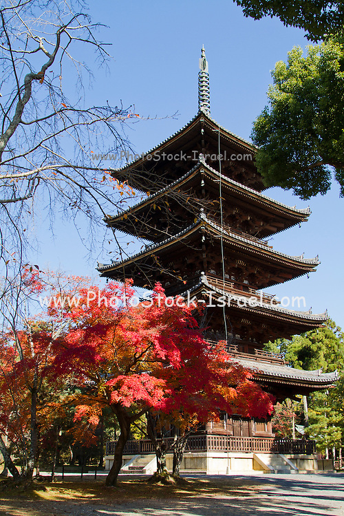 Japan, Kyoto, Toji temple