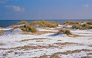 A728X6 Snow on sand dunes with marram grass