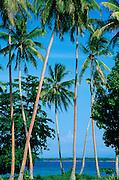 Ali Island, Papua New Guinea<br />