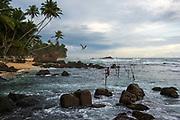 Stilt fishermen, near Unawatuna, southern Sri Lanka