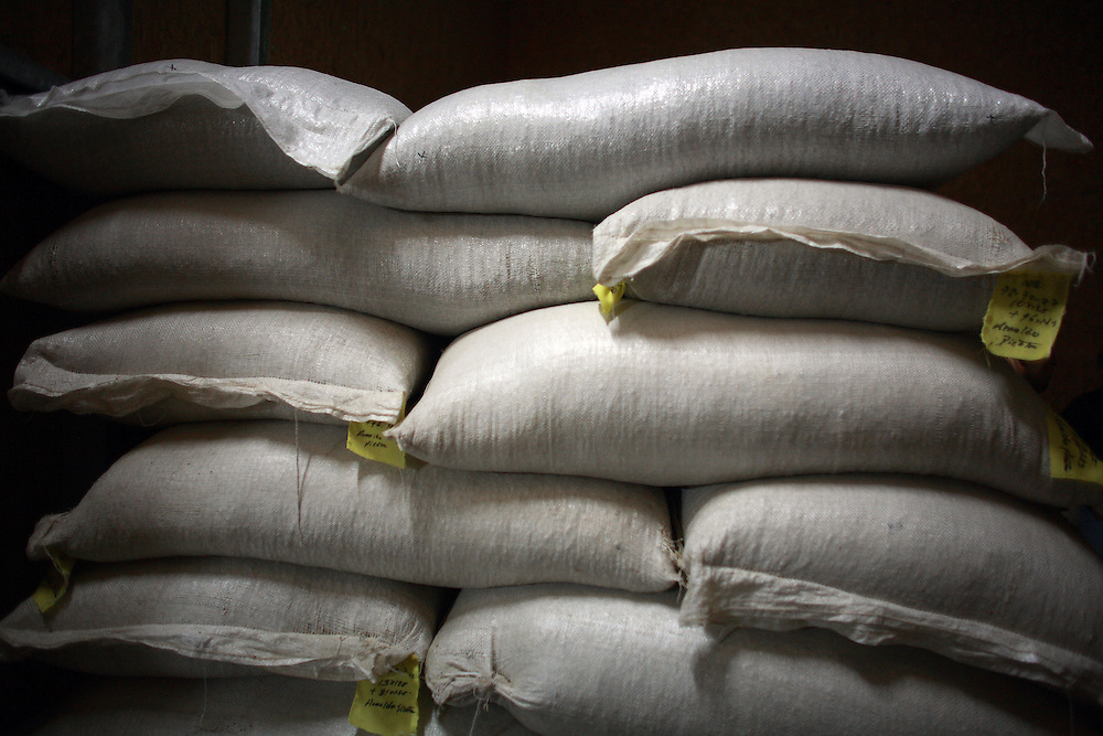 Bags of unroasted coffee are stacked and cured inside a barn at Kotowa Coffee in Boquete, Panama.