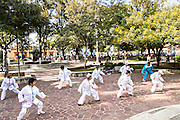 Elderly women practice Tai Chi for exercise in Conzatti Park Oaxaca, Mexico.