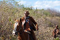 Vaqueiros na regiao do Agreste Pernambucano, usando o gibao de couro ,vestimenta  tipica do vaqueiro nordestino utilizada para proteger-se quando encontra-se em corrida nas matas, caatinga,  tentando dominar um animal/Cowboy's in Northeas, agreste Pernambuco. The leather jerkin is typical of the northeastern cowboy clothing used to protect yourself when race is in the woods trying to dominate an animal.Foto Foto Adri Felden/Argosfoto
